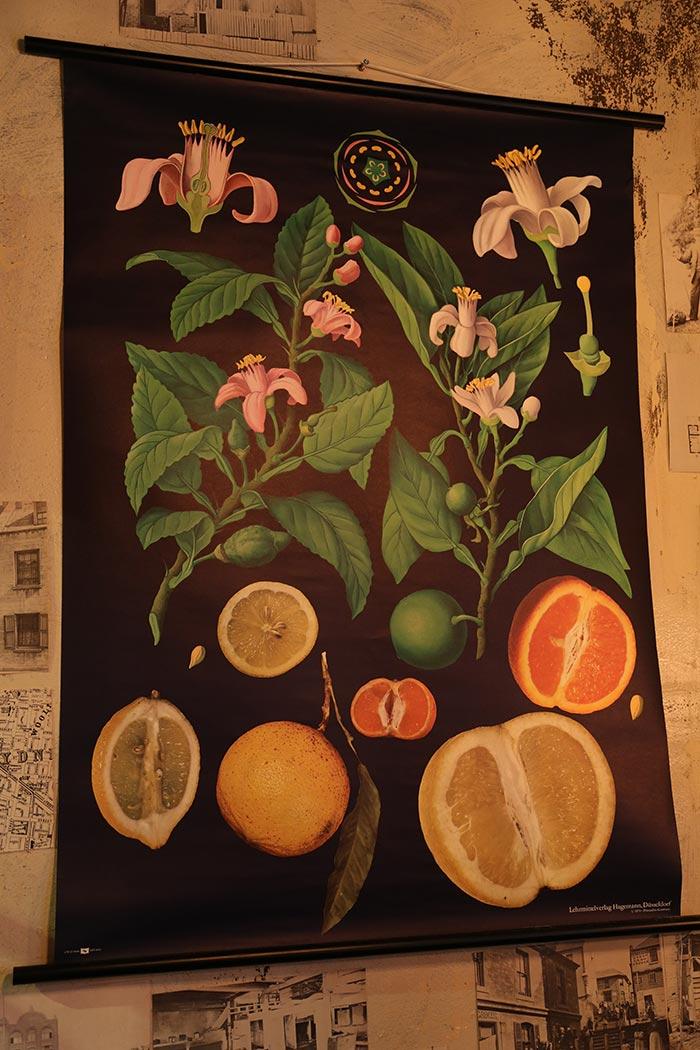 Imágenes de Decoración vintage para hostelería.