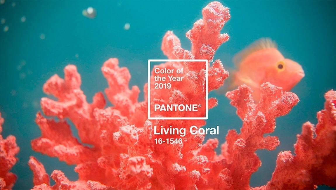 Living Coral. Color Pantone 2019.