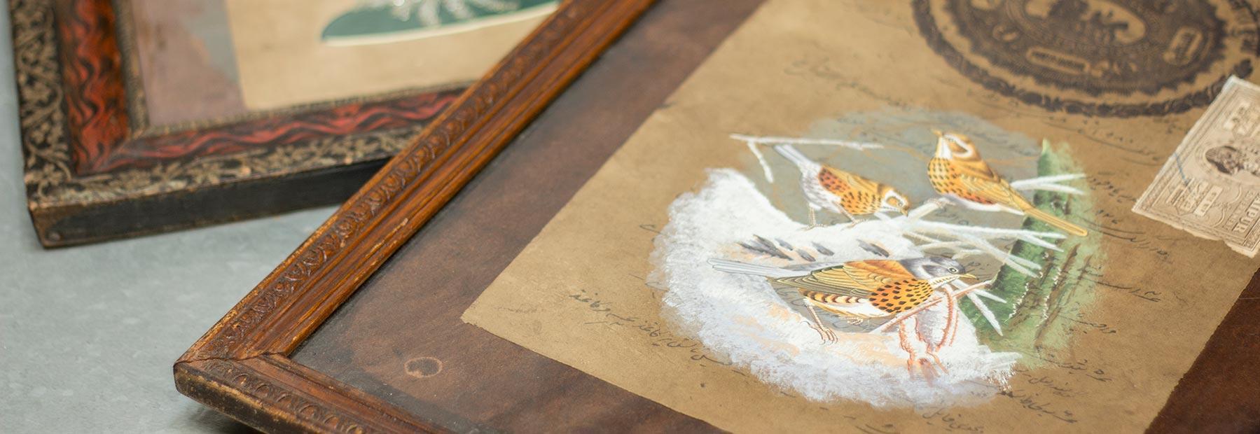 Illustrations et cadres vintage.