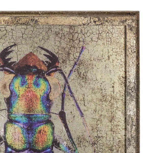 Cuadros de escarabajos.