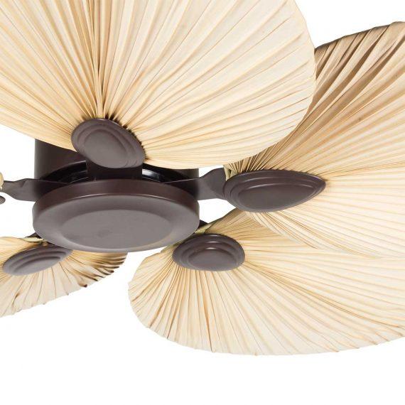 Ventiladores de techo Francisco Segarra.